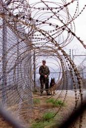 L'implantation de la puce avec le consentement de FDA Delme-fema-camp-soldier-dog-fence